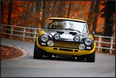 1° Rally delle Valli Biellesi - Oasi Zegna - Ottobre 2013