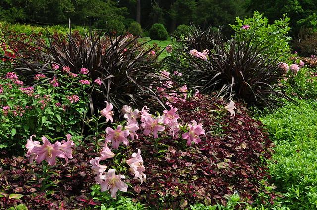 Flower Garden Walk (1)