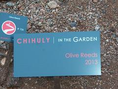 Chihuly in the Garden Desert Botanical Gardens_11 23 13_0101.JPG