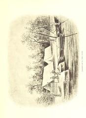 """British Library digitised image from page 89 of """"Sumpfleben und Jagden. Von Wien bis Batum. ... Mit ... Abbildungen und einer Karte"""""""