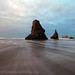 Bandon, Oregon by Pamela Winders