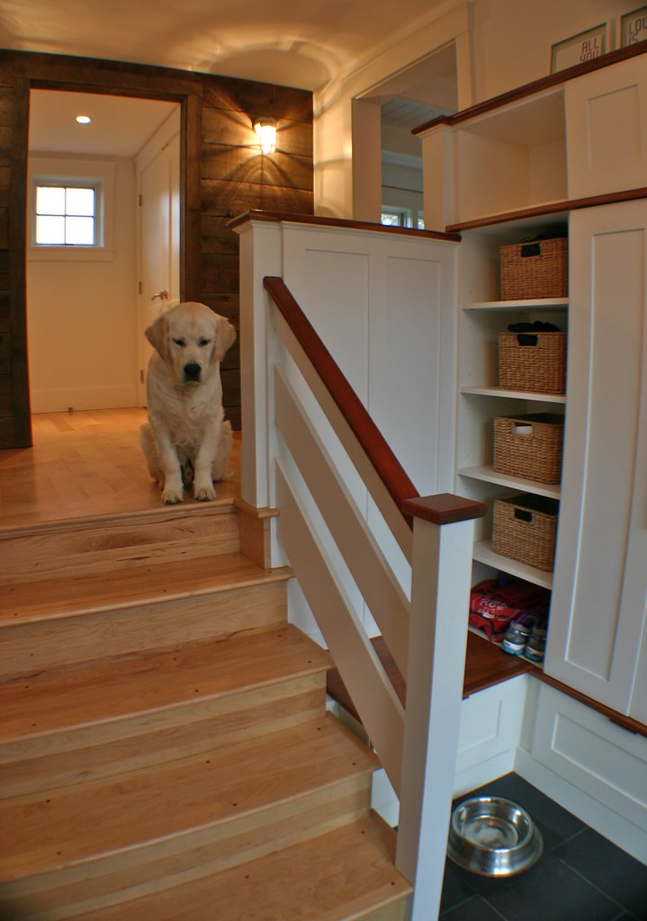 this family entry hall has it all, concealed storage for kid's clutter and even space for the family dogs