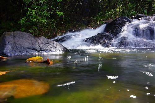 water wasser natur palau babeldaob ngchesar p019a
