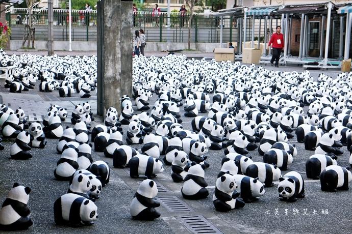 5 紙貓熊 1600貓熊之旅