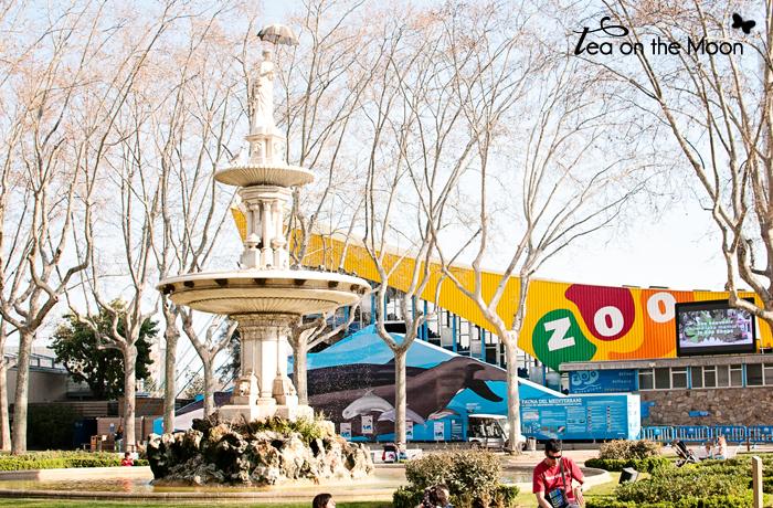 zoo barcelona 02