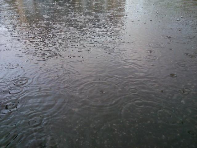 Дождевые круги // Rain circles