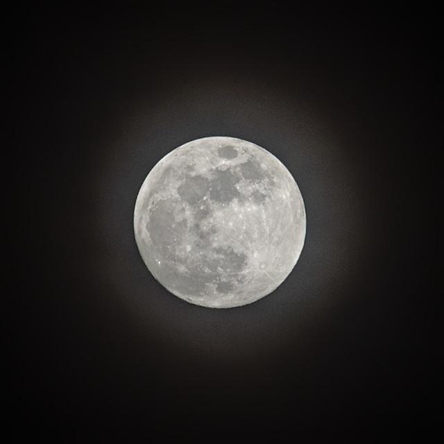 Mond 11.03.2017