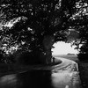 H503CX – BW – RolleiRetro80s – Rainy Road