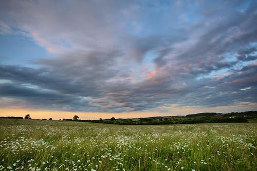 sunset day cloudy hertfordshire sandridge moonpennies roantrum mf13 heartwoodforest