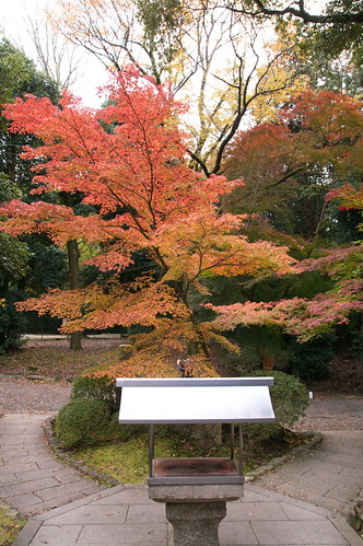 【写真】2012 紅葉 : 醍醐寺/2020-08-07/IMGP6849