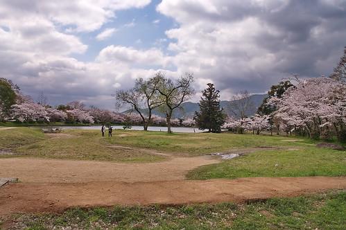 【写真】2013 桜 : 大覚寺/2020-09-15/IMGP9432