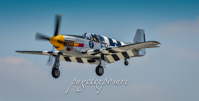 "North American P-51B Mustang ""Impatient Virgin?"""