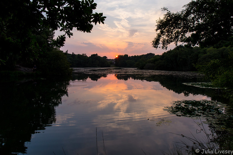 Creekmoor Ponds at sunset