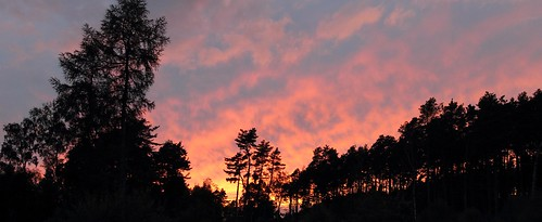trees sunset sky panorama clouds scotland speyside knockando hugin
