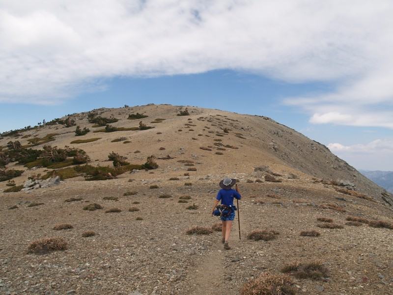 Climbing the east slope of West Baldy