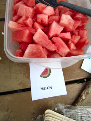 Melon Blocks