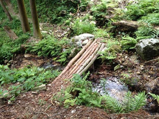 滝谷山 滝まわりコース 木橋