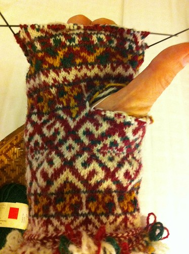 First Zemgale mitten halfway to the tip from the thumb. by BlueDragon2