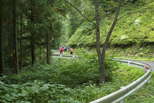 トレイルを抜けて、林道を走り、トレイルに入ります