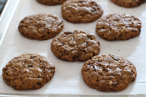 freshly baked whole wheat chocolate chunk cookies
