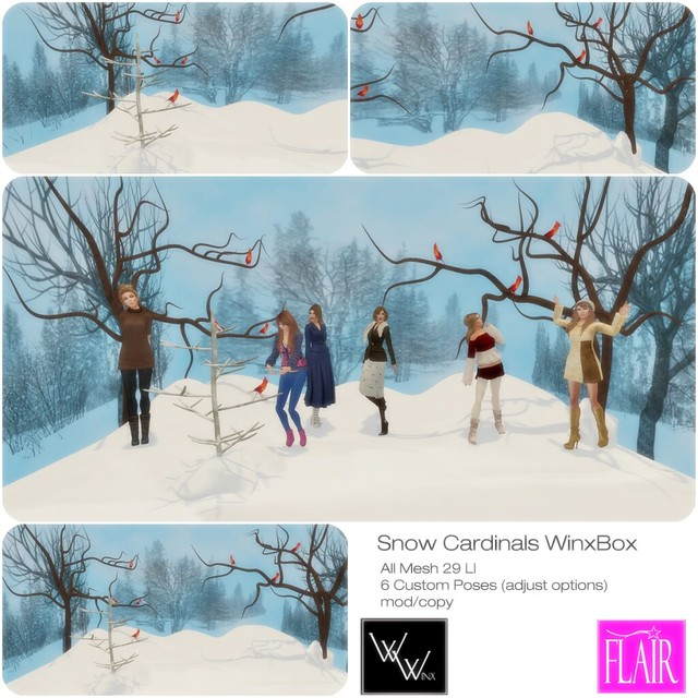 WinxBox - Snow Cardinals