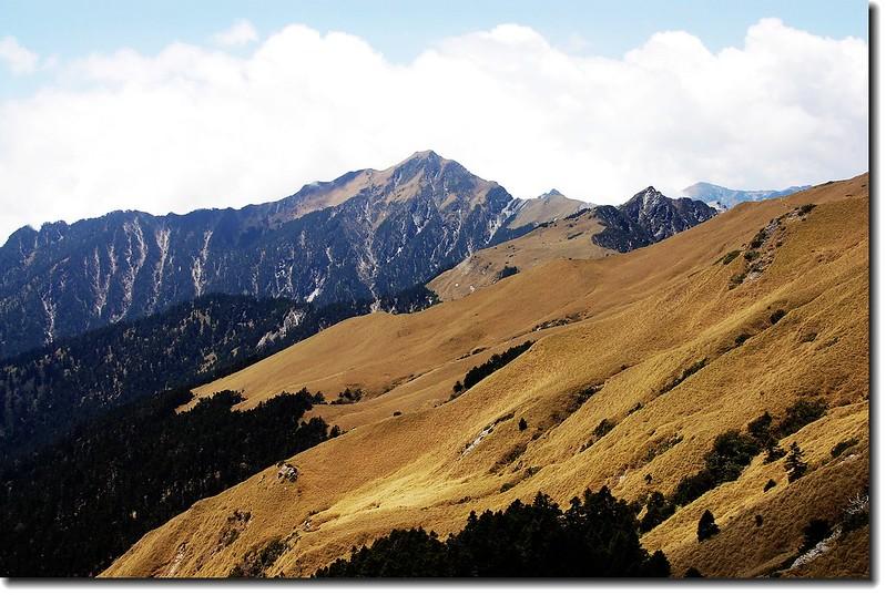 奇萊主山(From 奇萊北峰)