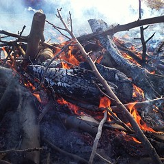 Burnpile #ranch #tagsforlikes #instagood #instanature #outdoors #fire #farm #farmer #farmpicsdaily #likeforlike #country #campfire #californiaagriculture #burnpile #northerncalifornia