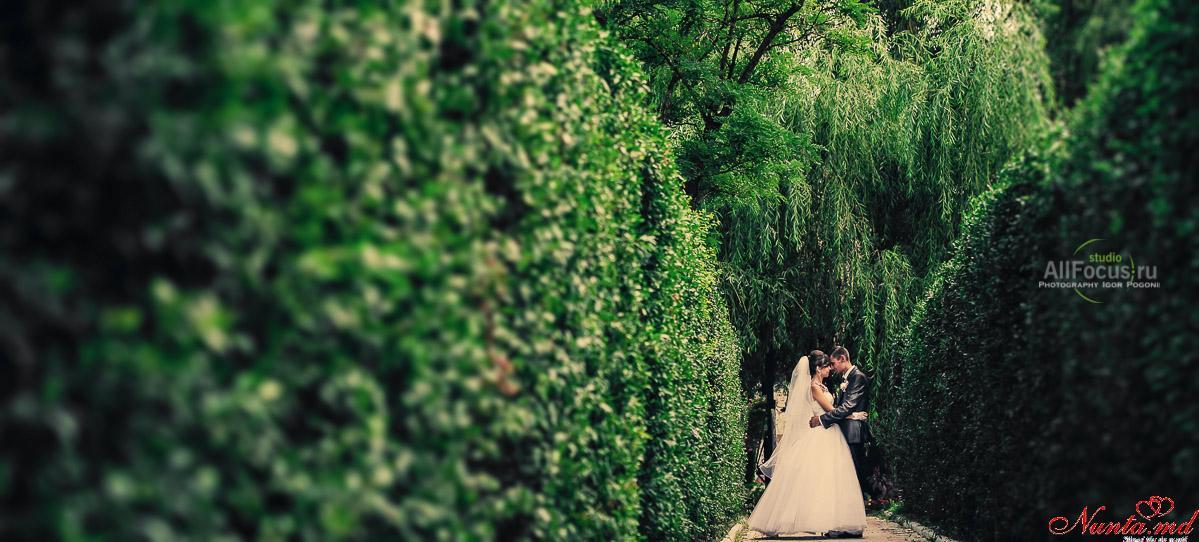 AllFocus Studio - Frumos, Calitativ, Stilat! Nunți în Europa. > Cele mai reusite momente de nunta