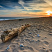 Driftwood at Moonstone Beach - Mike Dooley by mike_dooley