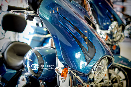 Harley Davidson Blues