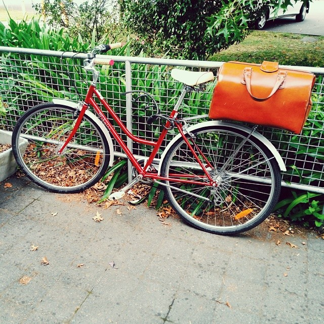 #cutebike #bikesoflaunceston A fancy Schwinn! #jealous