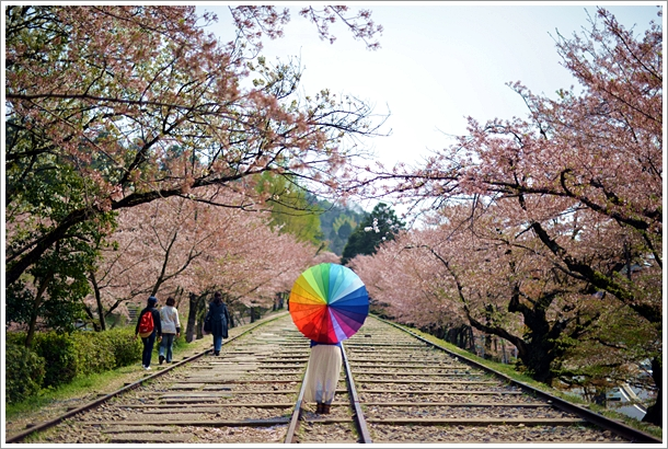 0410_彩色傘