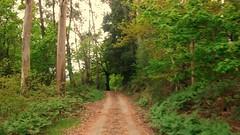 23 Pedra Miranda, paso de Bergunde a Cacheiro (PK 45)