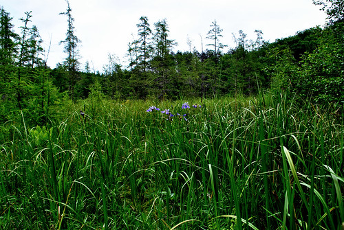Dorothy Lake State Natural Area