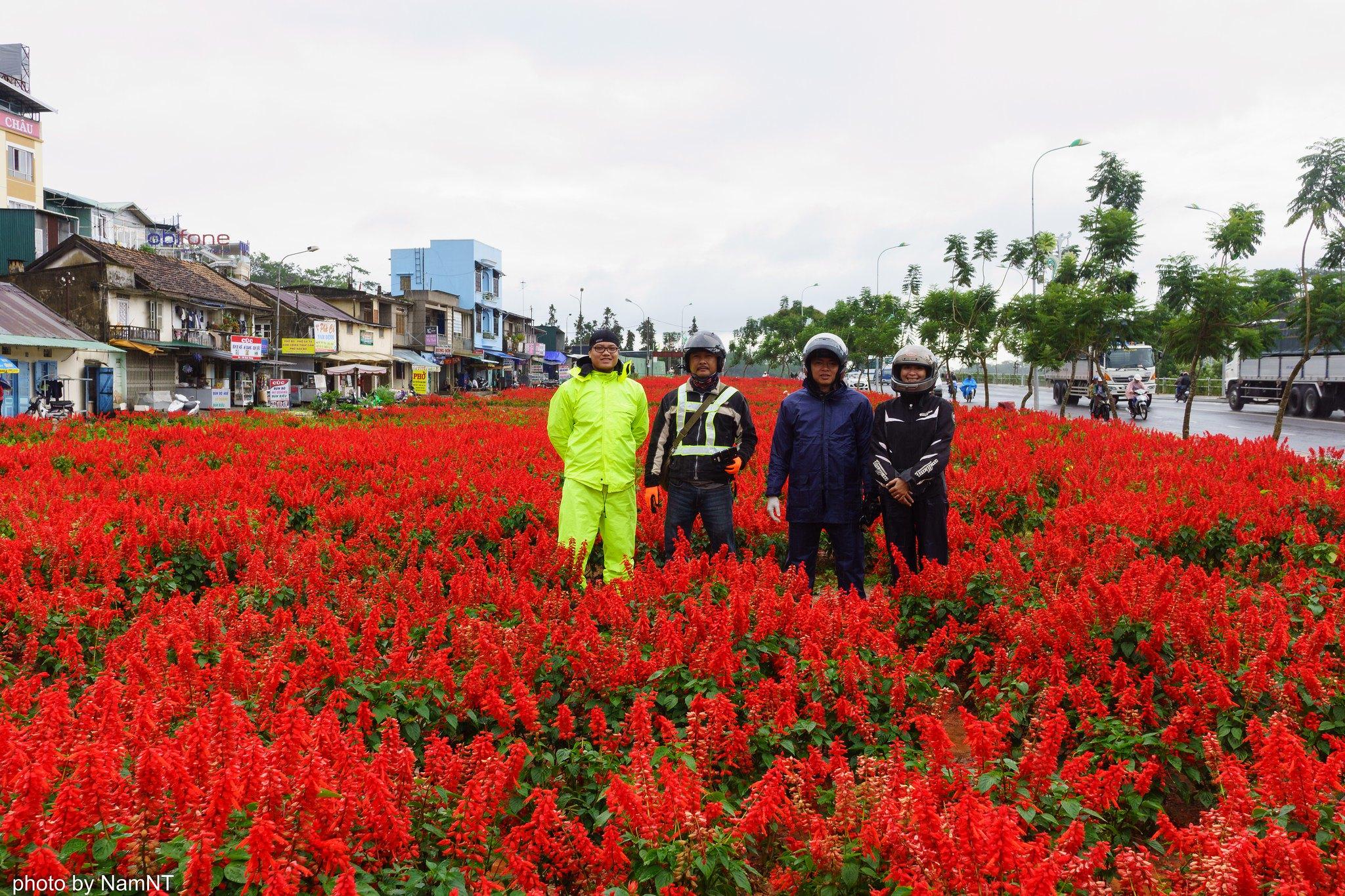 18926322483 c57f39c123 k - [Phượt] - SG-Cổ Thạch- Nha Trang- Đà Lạt: ngàn dặm mua hạt é cho người thương