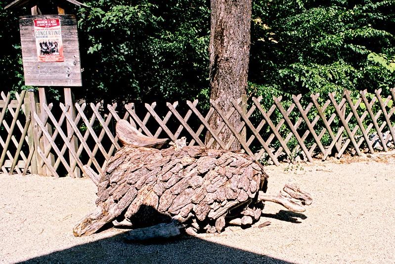 Forum photo argentique consulter le sujet bois flott for Bois flotte suisse