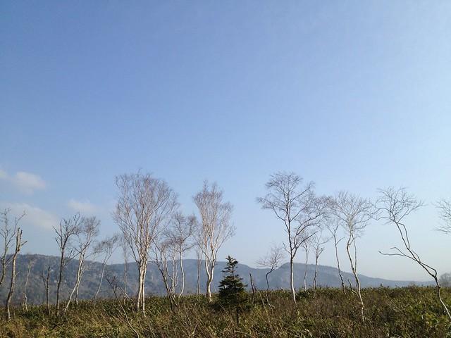 oze-japan-2013