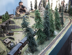 Model Railroads: AMRA2013 Peter Hook
