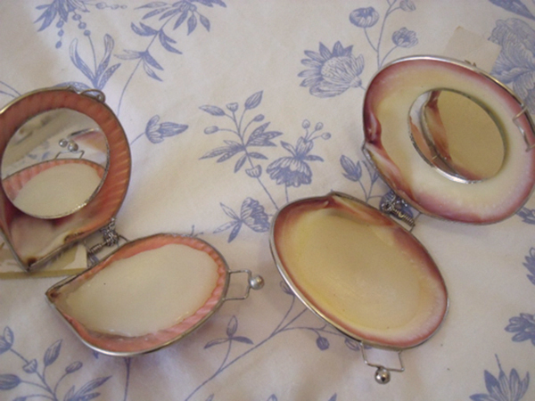 Organic Island Shell Lip Balm