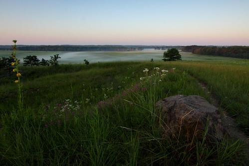 mist sunrise day path july clear prairie kame glacial compassplant purpleprairieclover wildquinine cookcountyforestpreserves illinoisnaturepreserve shoefactoryroadwoods carlhansenwoods poplarcreekprairie