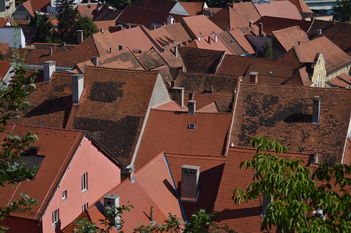 The roofs of Ptuj