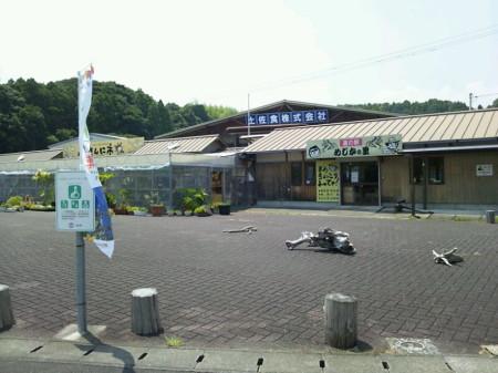 simizu-umi-2013-8-8-04