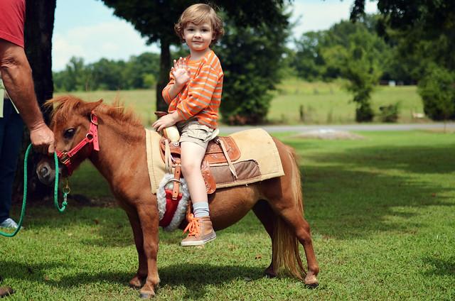 Hudson's Pony Ride