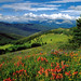 """3rd Place - Published Images - Jack Olson, """"White River National Forest - Colorado 2006 Calendar"""