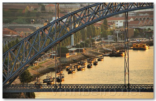 Rabelos no Douro by VRfoto