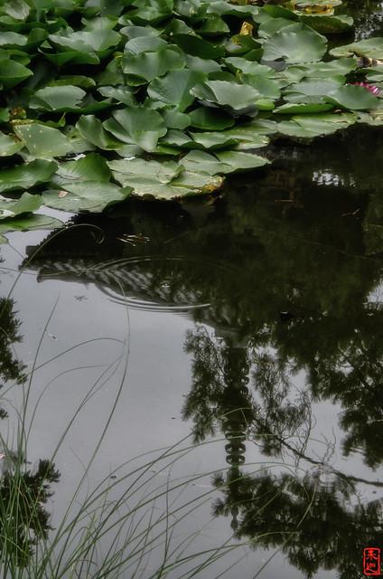 「逆さの塔」 法起寺 - 奈良