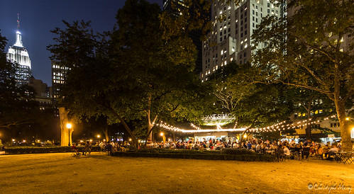 Shake Shack Madison Square by night