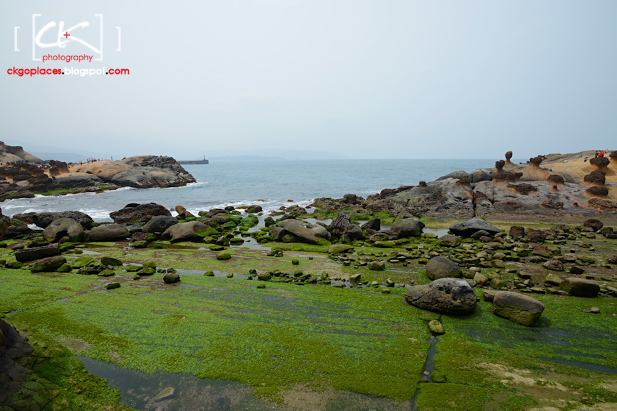 Taiwan_137
