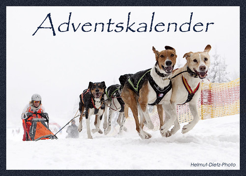 Adventskalender-AP-2013, Helmut-Dietz-Photo
