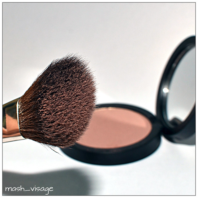 Giorgio Armani Sheer Blush # 5 Beige Violet